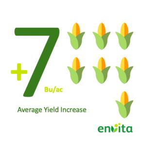 Yield Increase